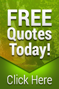 Free Tree Removal Quotes